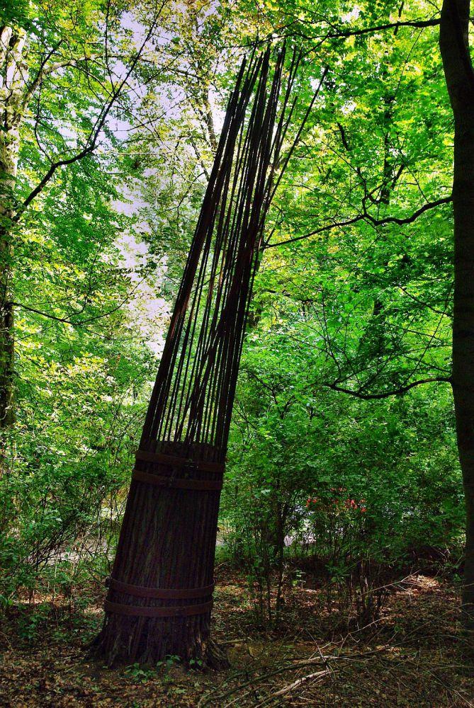 verkehrsgefährdung an straßen durch bäume