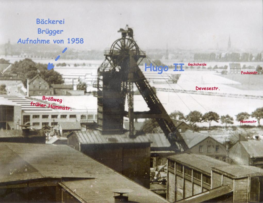 Gelsenkirchener Geschichten :: Alte Bauzeichnungen, Pläne und ...